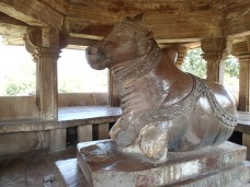 Nandi the bull, Shiva's vehicle.