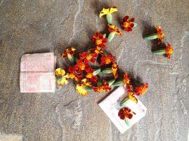 Money and flowers, Hindu offerings.